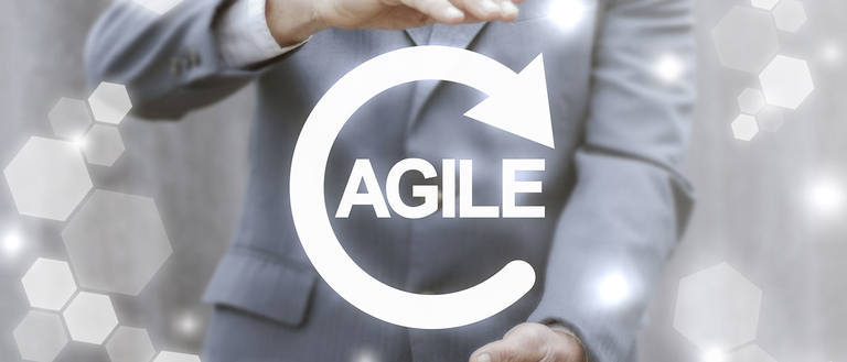 Management agile